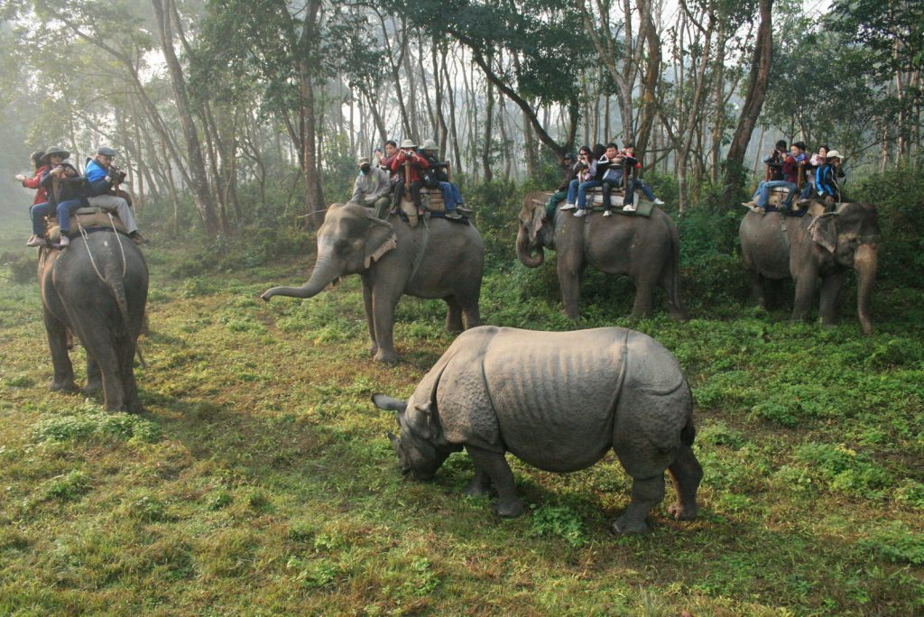 Chitwan_National_park1