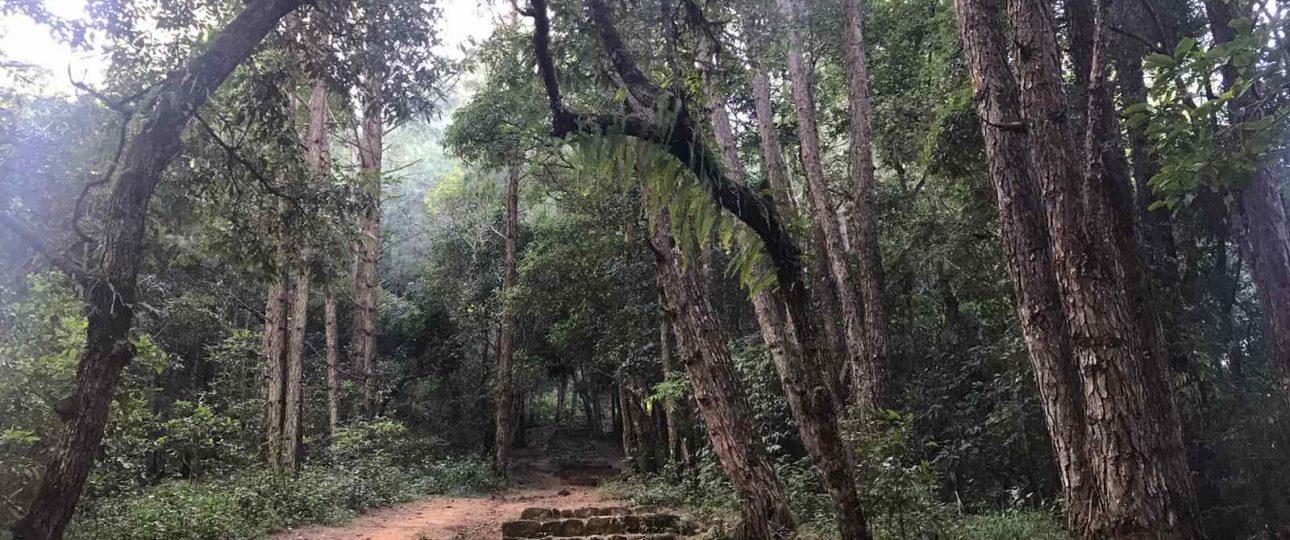 Jumacho Day Hike